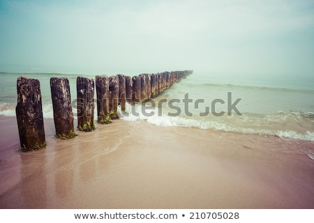 baltic sea background evening wooden wave breaker beach Stock photo © juniart
