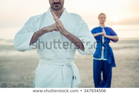 artes · marciais · mestre · branco · mulher · esportes · saúde - foto stock © w20er