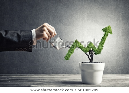 Increased Business Protection Stock photo © Lightsource