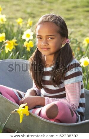 少女 座って 手押し車 スイセン フィールド 子 ストックフォト © monkey_business