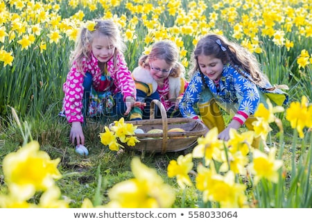 Kız easter egg hunt nergis alan çocuk bahçe Stok fotoğraf © monkey_business