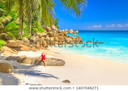 tropical turquoise sea with granite boulders Stock photo © kubais