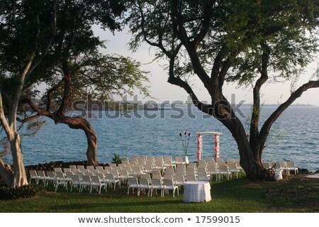 Oceanfront Wedding Torch stock photo © pngstudio