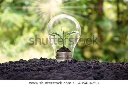 アイデア · 工場 · 電球 · 緑 · ランプ · 将来 - ストックフォト © hin255