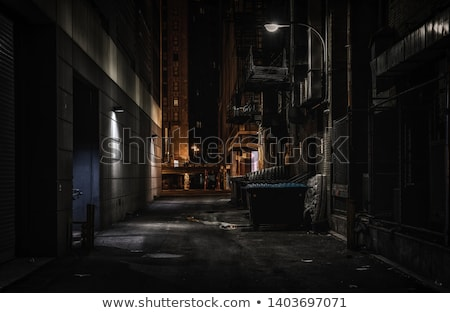 alley in the darkness Stock photo © marylooo