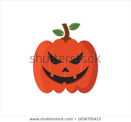 Pumpkin Stem Stock photo © Suljo