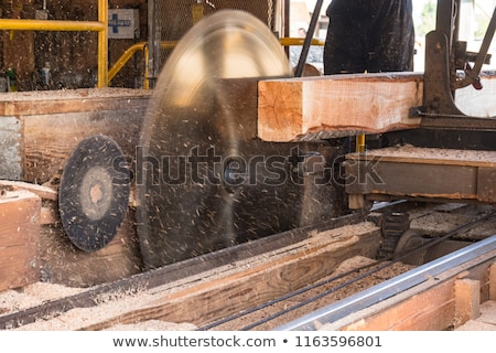 Klasszikus fűrészmalom vág fa ipar fűrész Stock fotó © rghenry