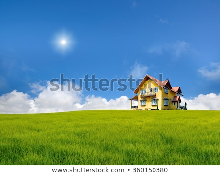 Maison colline simple illustration famille arbre Photo stock © ThomasAmby