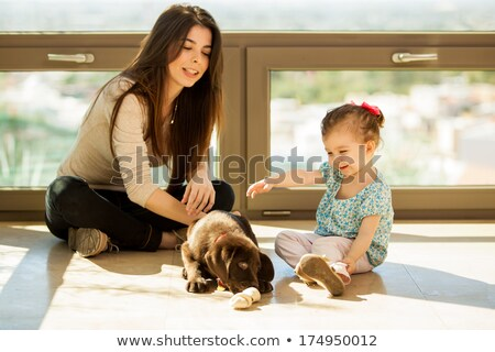 mother is playing with puppy and baby stock photo © dnf-style
