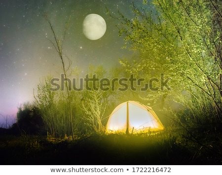 sueños · luna · joven · pelo · largo · luz · de · la · luna · sueno - foto stock © nizhava1956