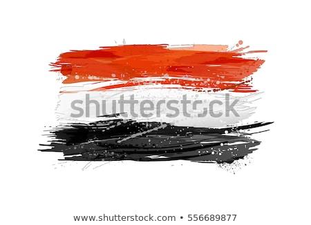 Vlag Egypte geschilderd borstel solide abstract Stockfoto © tang90246