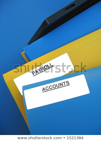 file folder labeled as expenditures stock photo © tashatuvango