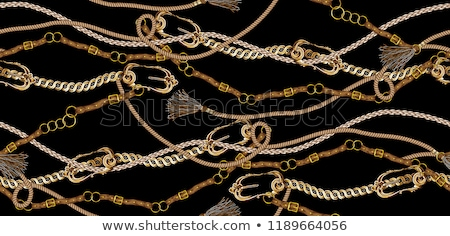 Chain with rope Stock photo © ozaiachin