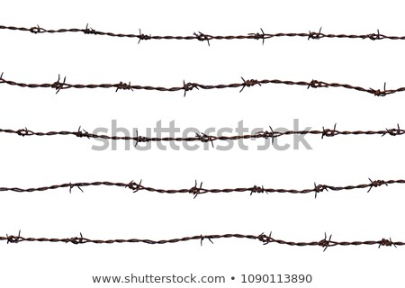 five pieces of barbed wire Stock photo © oblachko