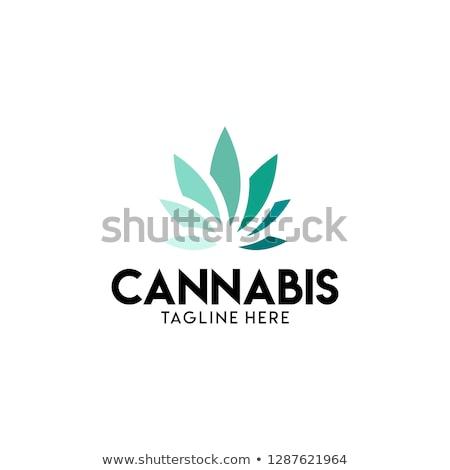 marijuana · feuille · timbres · médicaux · tampon - photo stock © zuzuan
