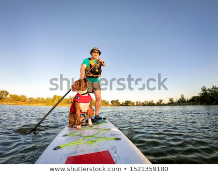 senior paddler with stand up paddleboard stock photo © pixelsaway