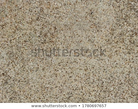 Wall coating close up abstract backgrouind. Stock photo © latent