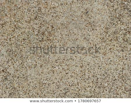 стены аннотация текстуры кремом защиту Сток-фото © latent