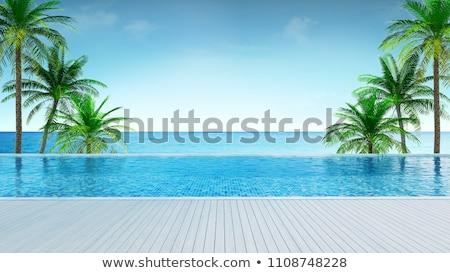 şezlong kum deniz görmek gün batımı yaz Stok fotoğraf © bank215