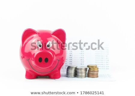piggy bank on a pile of books Stock photo © feedough
