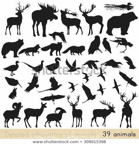 lots of animal vector silhouettes stock photo © 5xinc