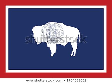 usa state wyoming flag on white background stock photo © tussik