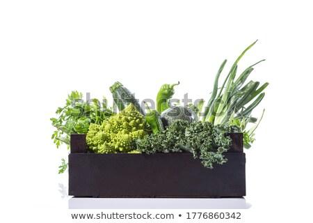 Courgette peterselie vak sla voedsel schone Stockfoto © Digifoodstock