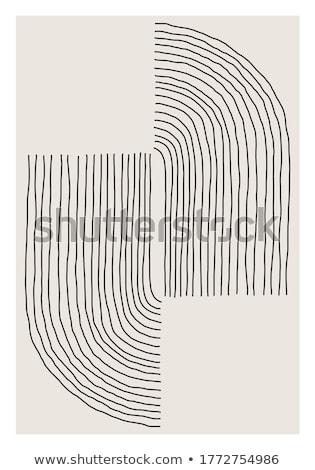 Absztrakt koncentrikus forma szín vonalak fehér Stock fotó © ptichka