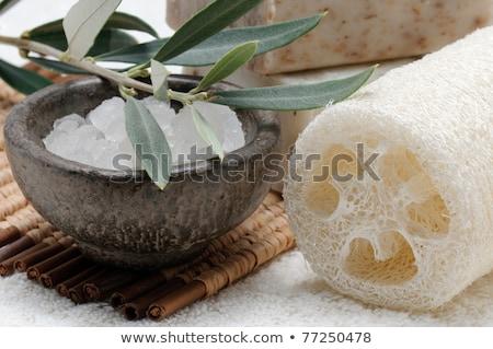 friss · olajbogyó · ág · fürdősó · izolált · fehér - stock fotó © joannawnuk