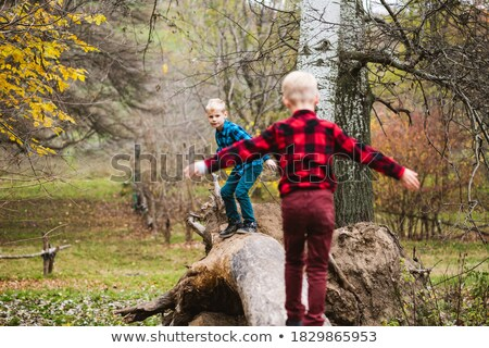 Stock fotó: Boy Climbing On The Fallen Tree Trunk In Forest