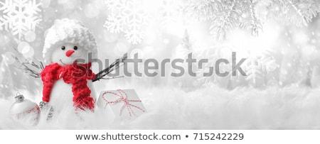 Christmas mroźny zimą lasu wektora wystroić Zdjęcia stock © Sonya_illustrations