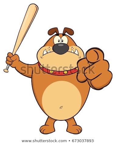 öfkeli kahverengi buldok karikatür maskot karakter Stok fotoğraf © hittoon