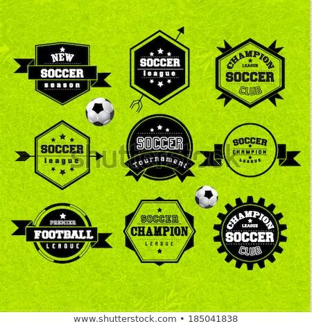 football tournament label design vector Stock photo © SArts