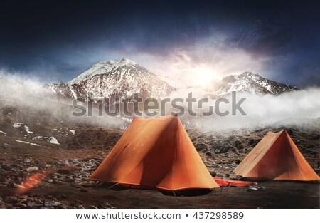 Campamento tienda niebla verde árboles Foto stock © lienkie