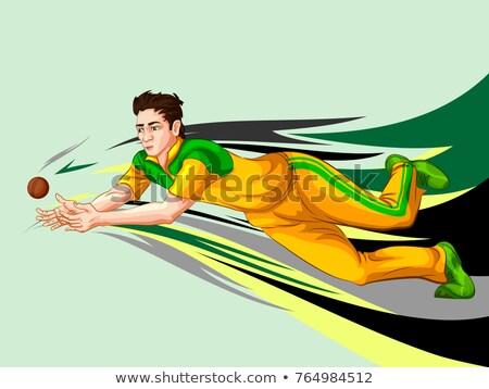 Illustration joueur cricket championnat balle blanche Photo stock © Vicasso