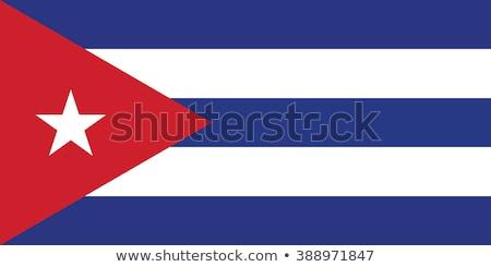 Kubańczyk banderą odizolowany biały Kuba trójwymiarowy Zdjęcia stock © daboost