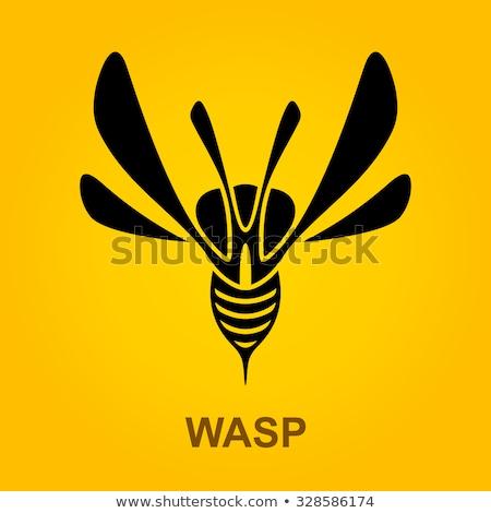 Stilizált darázs ikon logo felirat szimbólum Stock fotó © blaskorizov