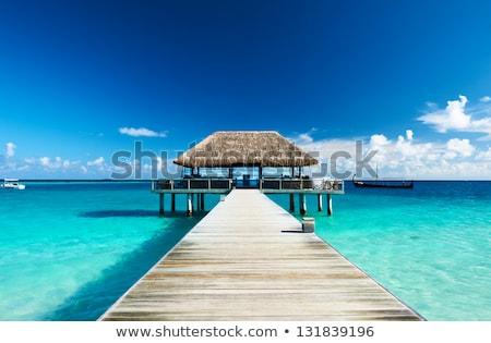 Stock photo: Maledives, beautiful tropical landscape.