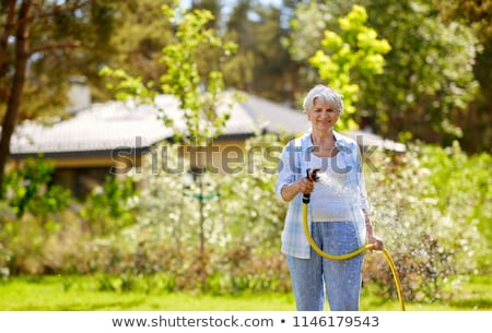 senior woman watering lawn by hose at garden stock photo © dolgachov