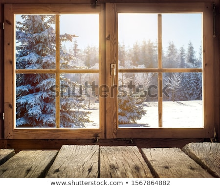 Cabine neige illustration arbre design maison Photo stock © colematt
