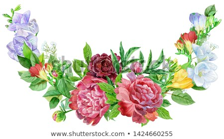 Stock photo: Watercolor illustration flower border. Vintage watercolor colorful illustration freesia and peonies