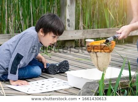 子供 ストリーム 実例 空 自然 風景 ストックフォト © colematt