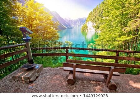 Alpesi tó idilli nap pára kilátás Stock fotó © xbrchx