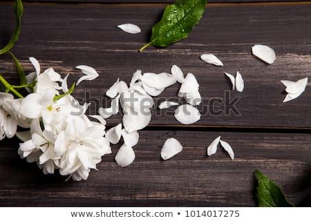 pachnący · herbaty · czajniczek · biały · lata · pić - zdjęcia stock © agfoto