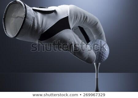 空っぽ ゴルフ 手袋 ゴルフボール ホロー ストックフォト © lichtmeister