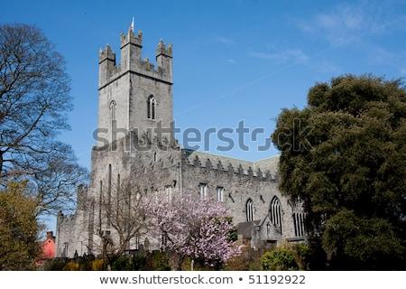 St Mary's Cathedral, Limerick, Ireland Stock photo © borisb17