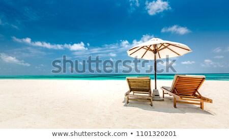 lounge chairs on the beach stock photo © pressmaster