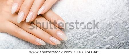 ストックフォト: 爪 · 白 · 孤立した