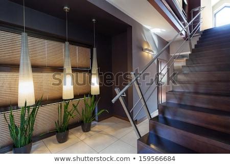 современных · дома · здании · дизайна · домой - Сток-фото © lypnyk2