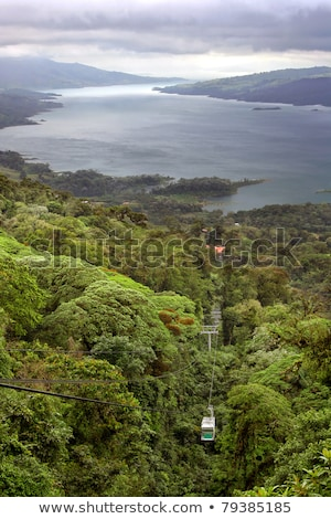 Tropical Rain Forest Canopy Tram Stock photo © mtilghma